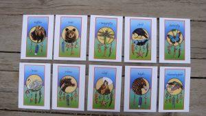 10-mc-cards